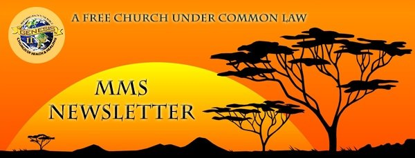 mms-newsletter-church-logo