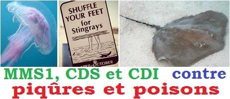 MMS-CDS-CDI-contre-piqures-et-poisons
