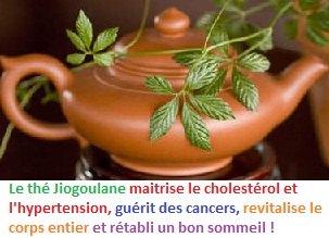 img-jiogoulane-theiere