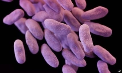 bbc-antimicrobial-resistance