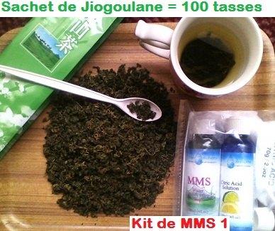 jiaogoulan-100-tasses-compare-MMS1